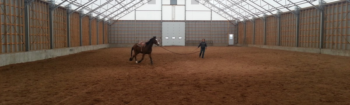 Woman with horse inside cobra equestrian fabric structure